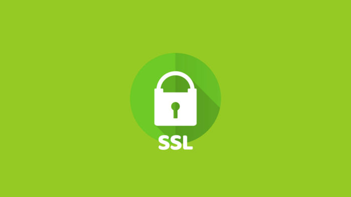 Everything You Need To Know About SSL